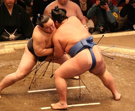 450px-Asashoryu_fight_Jan08
